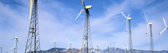 Shaklee supports construction of Windmills