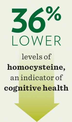 Low Homocysteine